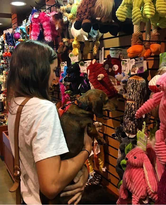 Kriser's Natural Pet Supplies Review   Blue Mountain Belle