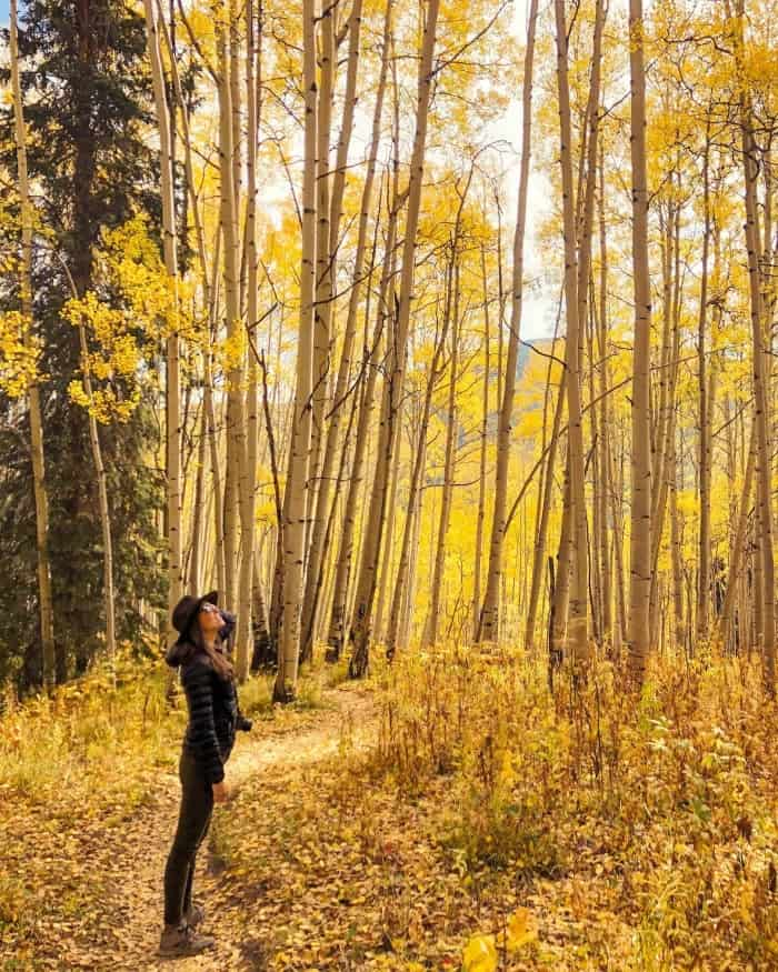 Standing in an Aspen Grove outside Crested Butte
