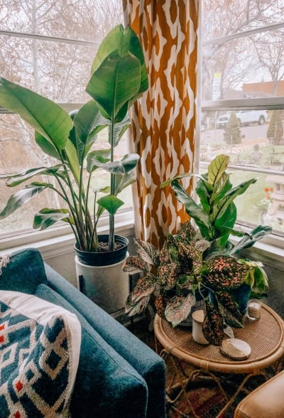10 Indoor Planters to Brighten Your Home
