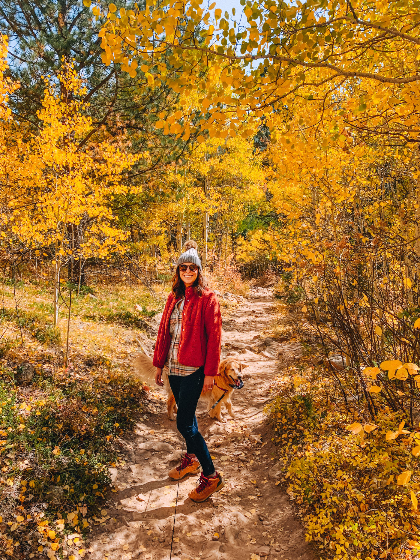 Fall Stroll At Golden Gate Canyon Park, Colorado